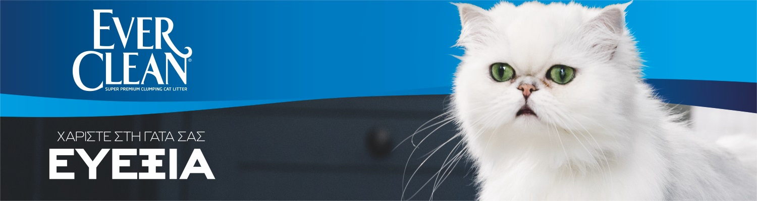 ever-clean-banner-2021